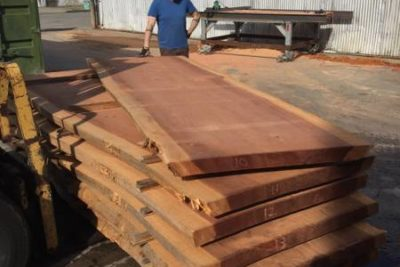 What is Live Edge Design?